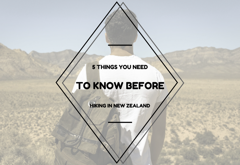What You Need to Know Before Hiking in New Zealand