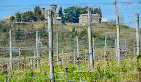 Savoring the Earthy Flavors of Umbria