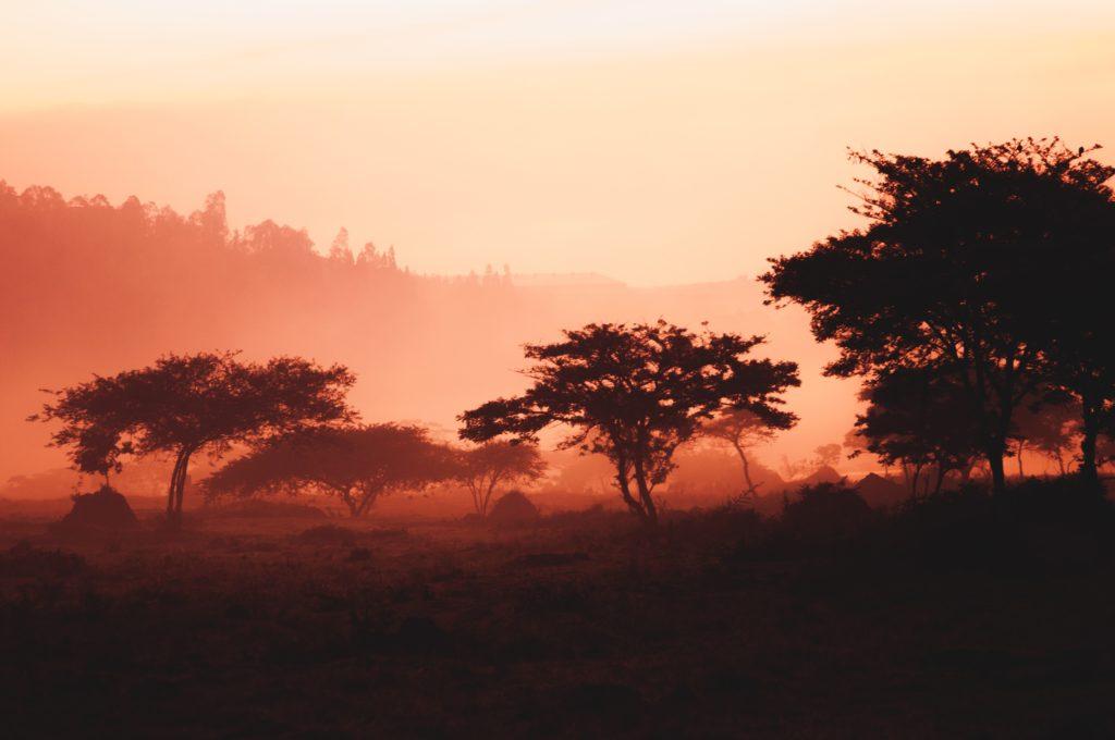 Exploring Rwanda: Natural Beauty and Culture